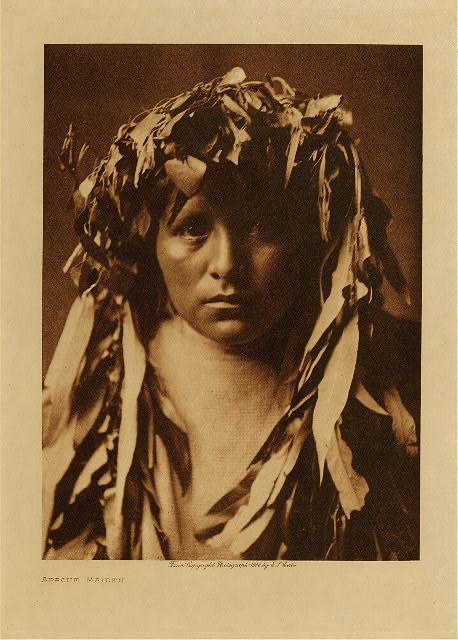 E.S. Curtis  photogravure Collection